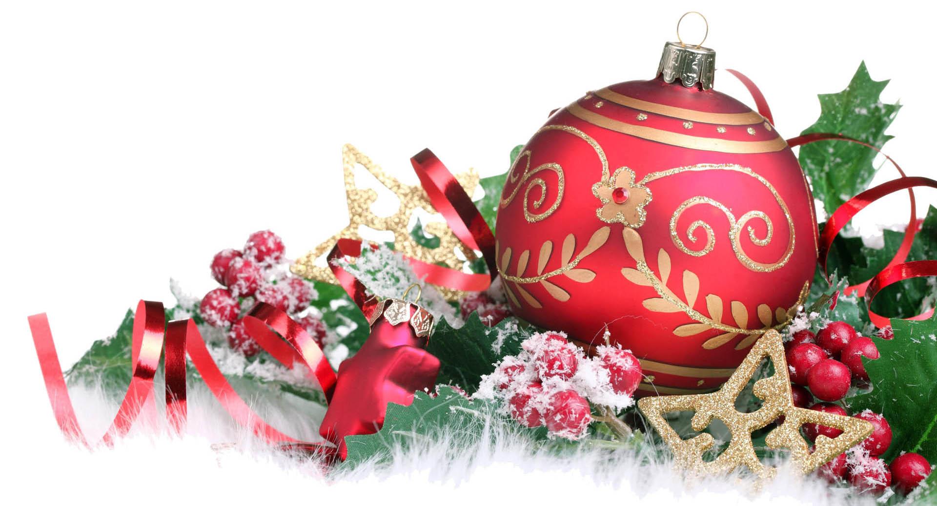 christmas navideños